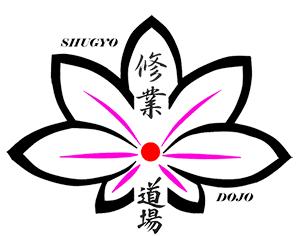 shugyo dojo300